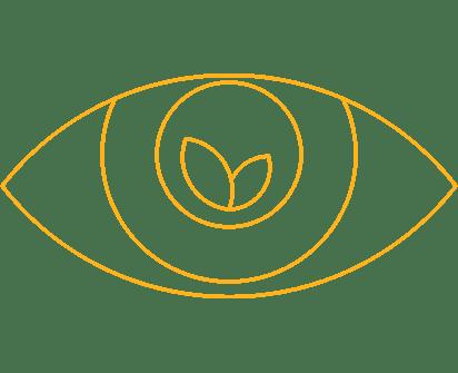 PAKCSYS Icon Achtsamkeit: Auge mit Pflanze